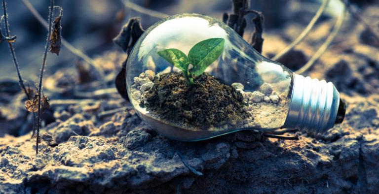 innovatie-en-groei-rene-herremans-merkrelaties